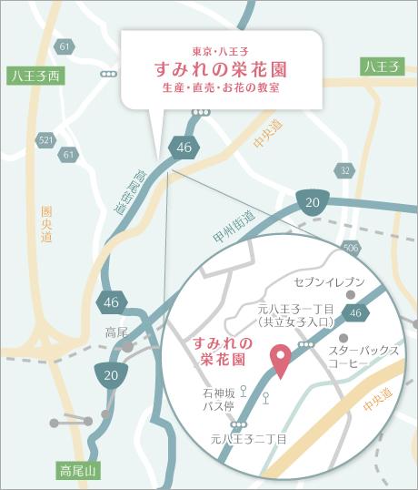 栄花園詳細マップ